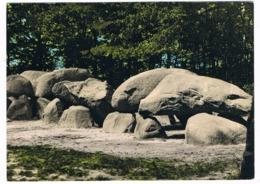HUN-45   DOLMEN At BORGER ( Hunebed ) - Dolmen & Menhirs