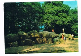HUN-46   DOLMEN At DRENTHE ( Hunebed ) - Dolmen & Menhirs