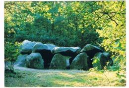 HUN-49   DOLMEN At DROUWEN ( Hunebed ) - Dolmen & Menhirs