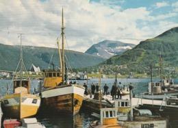 TROMSO. PART FRA HAVNA MOT TROMSDALSTIND - Norway
