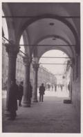 Dubrovnik (Ragusa) * Ulica Krala Petra, Strasse, Laube, Apotheke, Geschäfte, Stadtteil * Kroatien * AK1185 - Croatie
