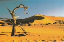 PHONE CARD NAMIBIA (E51.19.1 - Namibie