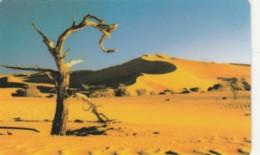 PHONE CARD NAMIBIA (E51.24.8 - Namibie
