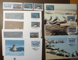 1993 Turkmenistan WWF Kaspi-Ringelrobbe  Caspian Seal Maxi Card FDC MNH ** #cover 4931 - W.W.F.