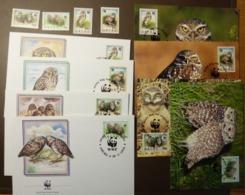 1994 Aruba WWF Kaninchenkauz  Burrowing Owl  Maxi Card FDC MNH ** #cover 4932 - W.W.F.