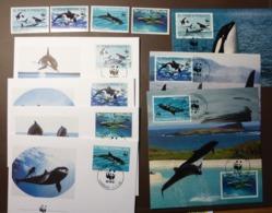WWF Sao S. St. Tome & Principe Killer Whale Wale Schwertwal Orcin Orca Orques 1992 Maxi Card FDC MNH ** #cover 4935 - W.W.F.