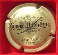 P 42 CANARD DUCHENE 76c - Canard Duchêne