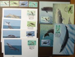 WWF 1990 FÄRÖER FAROE ISLANDS Marine Sea Life Mammals Whale Whales Wale Baleine Dolfij  Maxi Card FDC MNH ** #cover 4942 - W.W.F.
