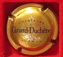 P 42 CANARD DUCHENE 75g - Canard Duchêne
