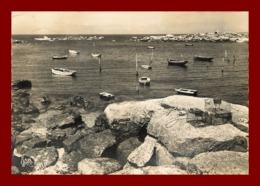 Mazou En Porspoder * L'entrée Du Port   ( Scan Recto Et Verso ) - France