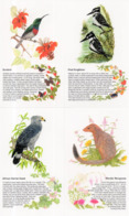 South Africa - 2018 Kingfishers Cape Town 2021 Philatelic Exhibition Postcard Set - Oiseaux