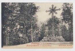 AJ17 Montaigu, Le Calvaire - Scherpenheuvel, Kalvarieberg - Local Publisher - Scherpenheuvel-Zichem
