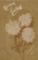 AR69 Greetings - Season's Greetings - Chrysantemums - Christmas