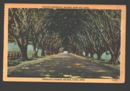 Balboa - Avenida Roosevelt - Zona Del Canal - Linen - Panama