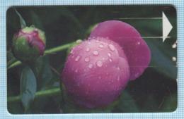 BELARUS / Phonecard / Phone Card / Beltelecom. Flora. Flowers 2005 - Belarus