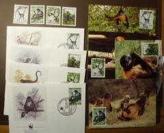 Republica De Honduras 1990  Geoffroy`s Spider Monkey -WWF Maxi Card FDC MNH ** #cover 4943 - W.W.F.