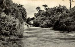 LONGEVILLE L AVENUE FORESTIERE - Frankreich