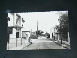 LE VERDON   / ARDT  Lesparre-Médoc   1960  / VUE  RUE  CINEMA ..  EDITEUR - France