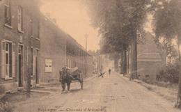 Buyzingem.  Chaussée D'Alsemberg.   Steenweg Op Alsemberg.  Scan - België