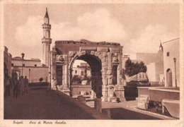 TRIPOLI, LIBYA ~ AN OLD POSTCARD  POSTCARD  #97336 - Libya
