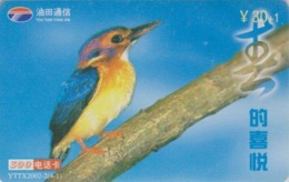 Télécarte Chine - ANIMAL - OISEAU - MARTIN PECHEUR - AZURE KINGFISHER BIRD China YTTX Phonecard - EISVOGEL - 4948 - Autres