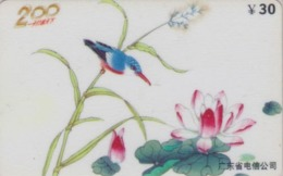 Télécarte Chine - Peinture ANIMAL - OISEAU - MARTIN PECHEUR - KINGFISHER BIRD China Painting Phonecard - 4950 - Autres
