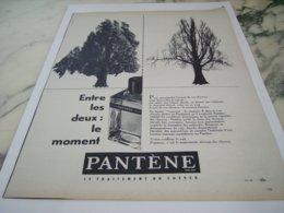 ANCIENNE PUBLICITE CHUTE DE CHEVEUX PANTENE 1961 - Perfume & Beauty