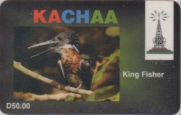 Télécarte Prépayée GAMBIE - ANIMAL - OISEAU - MARTIN PECHEUR - KINGFISHER BIRD GAMBIA Phonecard - EISVOGEL - 4954 - Gambia