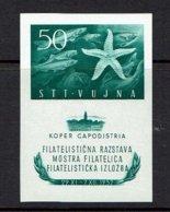 YUGOSLAVIA...1952...MNH...Trieste RARE Sheetlet - 1945-1992 République Fédérative Populaire De Yougoslavie