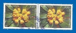 2015 - Pittosporum Tanianum 2 Timbres - Used Stamps
