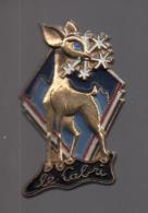 REF : MON1 : Badge Médaille Ecole De Ski Le Cabri - Sports D'hiver