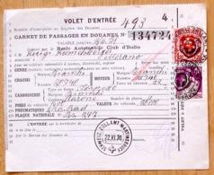 Schweiz Suisse 1930: Zu 112+164 Mi106+195 Yv 124+209 Auf VOLET D'ENTRÉE Mit O ZOLLAMT MARTINSBRUCK 22.VI.30 - 1882-1906 Coat Of Arms, Standing Helvetia & UPU