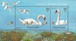 """DINAMARCA /DENMARK /DÄNEMARK /DANMARK -EUROPA 2019 -NATIONAL BIRDS.- """"AVES -BIRDS -VÖGEL-OISEAUX""""-SOUVENIR SHEET/BLOCK - 2019"""