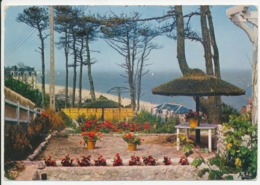 HOULGATE - Jardin De La VillaTitania Et La Mer (20736) - Houlgate
