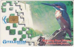 Télécarte Puce MALAISIE - ANIMAL - OISEAU - MARTIN PECHEUR - KINGFISHER BIRD MALAYSIA Chip Phonecard - 4958 - Maleisië