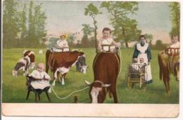 L80b186 - Groupe De Bébés S'alimentant Directement à La Vache - Dessin Série 351 - Cartes Humoristiques