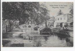 Padda Boats On The Canal, Negombo, Ceylon. - Sri Lanka (Ceylon)