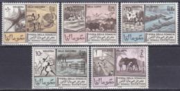 Somalia 1965 Wirtschaft Economy Messe Fair Gerberei Fischfang Fishery Viehzucht Rinder Cattles Zuckerrohr, Mi. 74-8 ** - Somalie (1960-...)