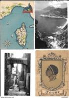 CORSE -- Lot De 17 Cartes Patrimonio ,Nonza,Bastia,Porto  ... Etc ... Toutes Scannées - Frankrijk