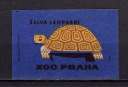Tschechisches Zuendholzschachteletikett, Schildkroete (80253) - Zündholzschachteletiketten