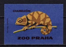 Tschechisches Zuendholzschachteletikett, Chamaeleon (80255) - Zündholzschachteletiketten