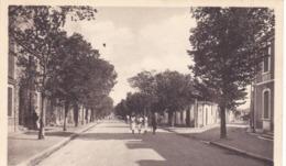 17. LA ROCHELLE. CPA. ANIMATION. L'AVENUE COLLIGNY - La Rochelle