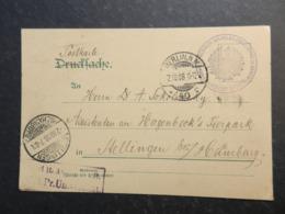19997) GERMANIA ANTICHI STATI FRANCHIGIA BERLIN ZOOLOGISCHES INSTITUT FRIEDRICH WILHELMS UNIVERSITAT NON COMUNE - Bavaria
