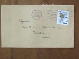 Ireland 2001 Cover Caislean To Dublin - Bird - 1949-... Republic Of Ireland