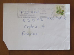 Ireland 2005 Cover To France - Flower Navelwort - 1949-... Repubblica D'Irlanda