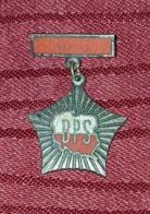 POLISH VINTAGE MILITARY BADGE, POLAND - Militari