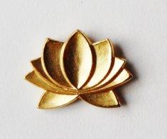 Pin's Doré Lotus - EVR - Pin's