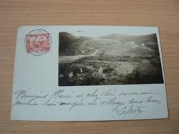 CP 143 / ALGERIE / CARTE VOYAGEE - Algérie