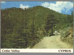 CPM Chypre - Cedar Valley - Cyprus