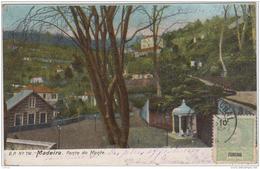 MADEIRA  FONTE DO MONTE 1907 - Madeira